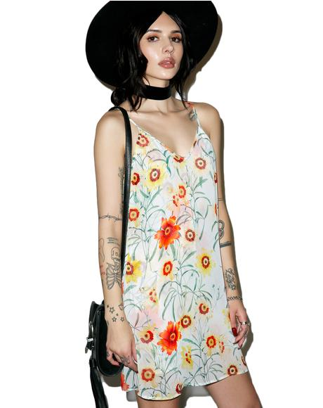 Wild Daisy Jumper Dress