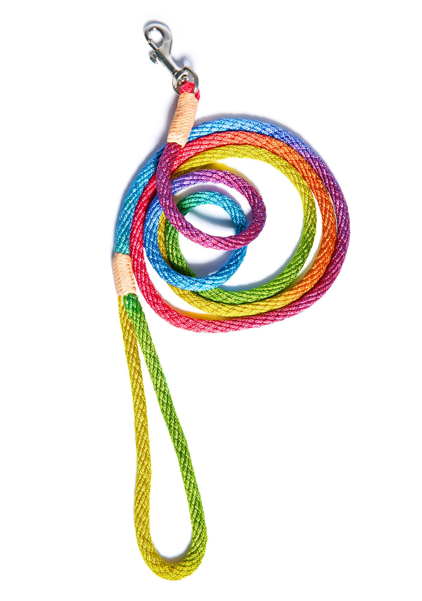 Chasing Rainbows Snap Lead Leash