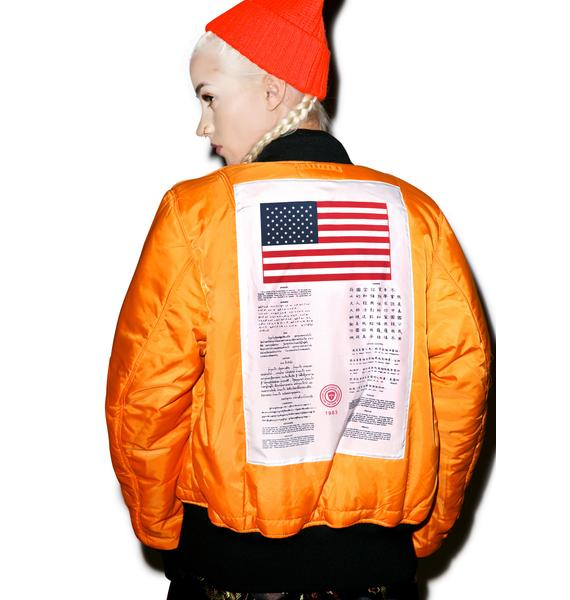 Alpha Industries MA-1 Blood Chit Flight Jacket