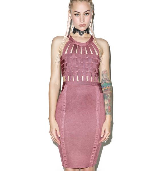 Rose Bound Bodycon Dress