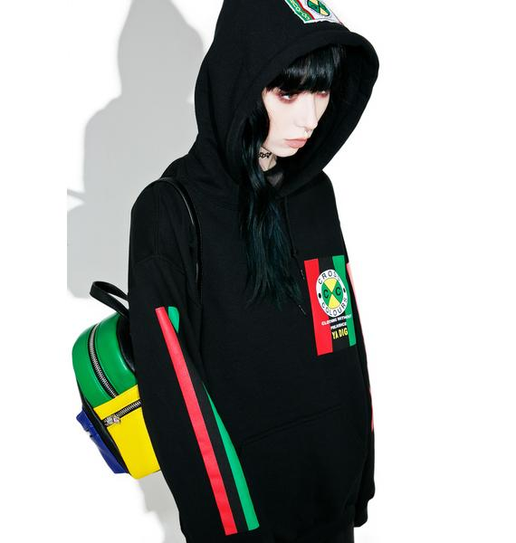Cross Colours Flag Logo Pullover Hoodie