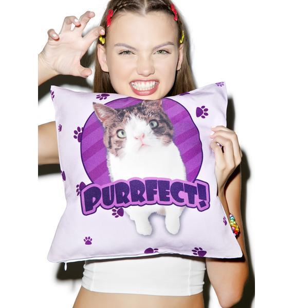 Purrfect Pillow
