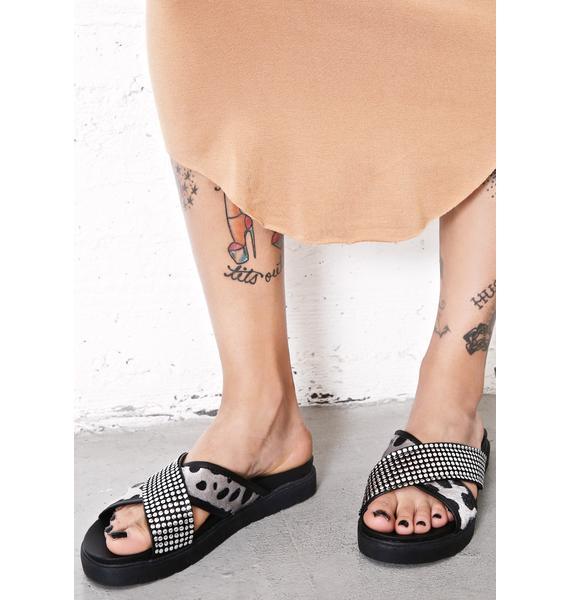 Glamorous Instinct Slides