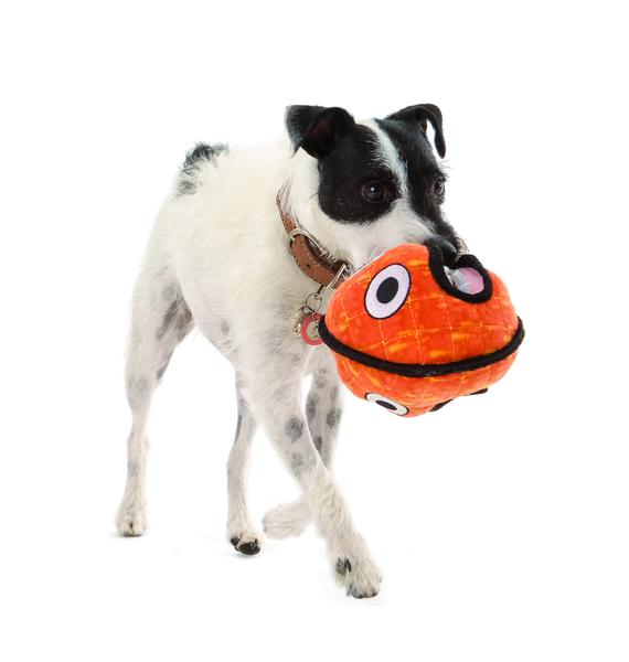 Two-Faced Alien Series Ball Dog Toy