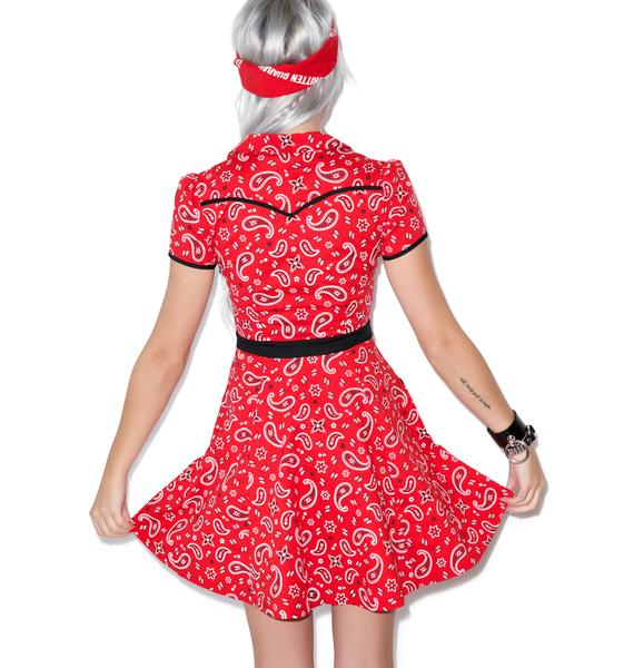 Sourpuss Clothing Hellbilly Red Bandana Print Dress