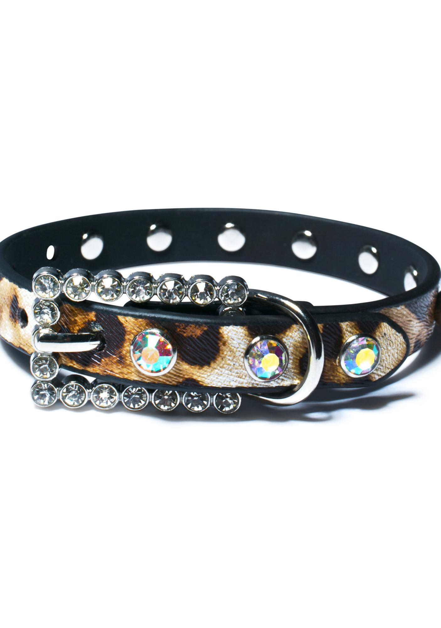 Running Wild Dog Collar
