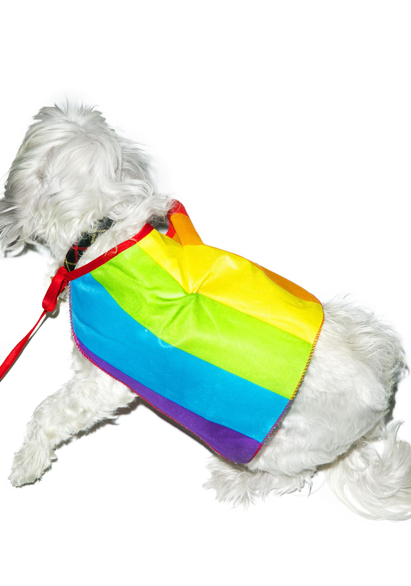 Rainbow Dog Cape Costume