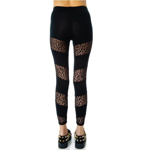 Lip Service Don't Let the Cat Out Of The Bag Leggings