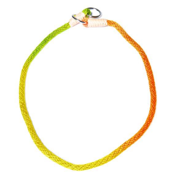 Chasing Rainbows Slip Collar