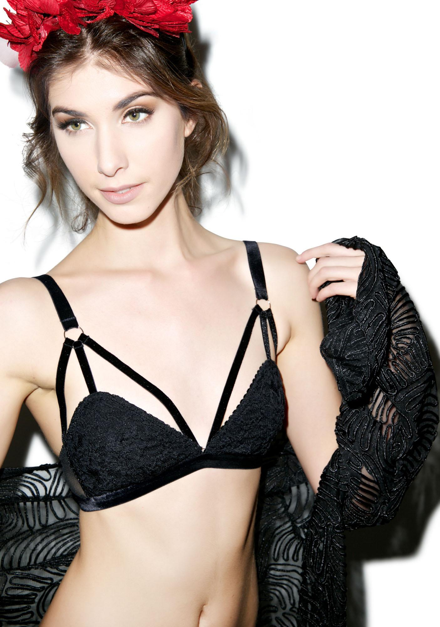 Sneak A Peak Lace And Fishnet Bra Set
