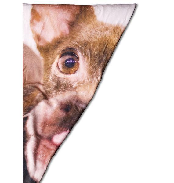 ASPCA Chihuahua Pup Blanket