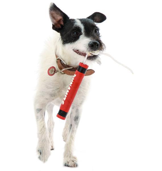 Mini Dyn-o-mite Dog Toy