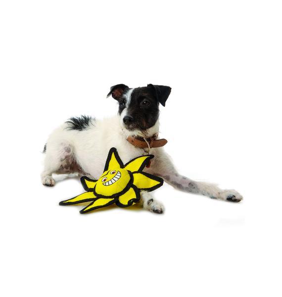 Sunny Ball Dog Toy