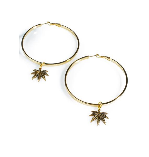 Blunted Objects Hoop Dreams Leaf Earrings