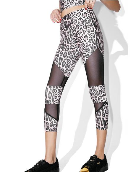 Leopard Cut Out Capri