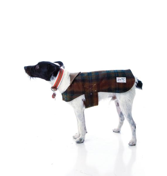 Plaid Reversible Dog Coat
