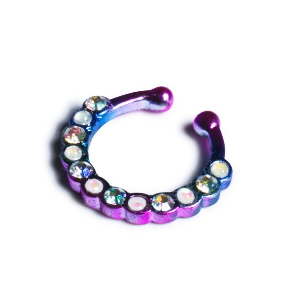 Catch the Light Septum Clip