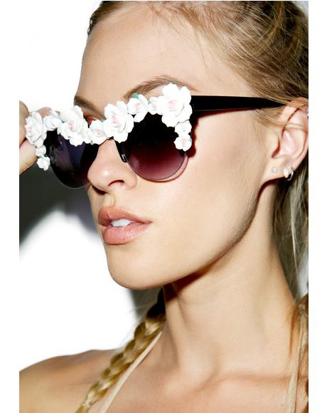 Bobby Rose Sunglasses