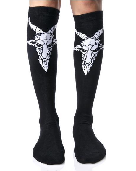 Killin' It Socks