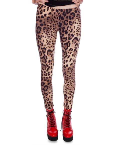 Leopard Spot Leggings