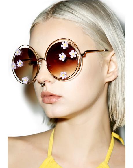 Morning Glory Sunglasses