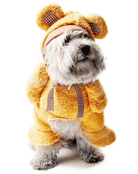 Cuddly Teddy Dog Costume