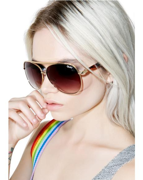 Macaw Sunglasses