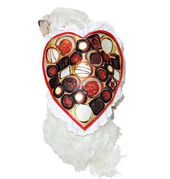 Yr Favorite Sweetie Dog Costume