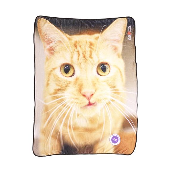 ASPCA Charming Cat Blanket