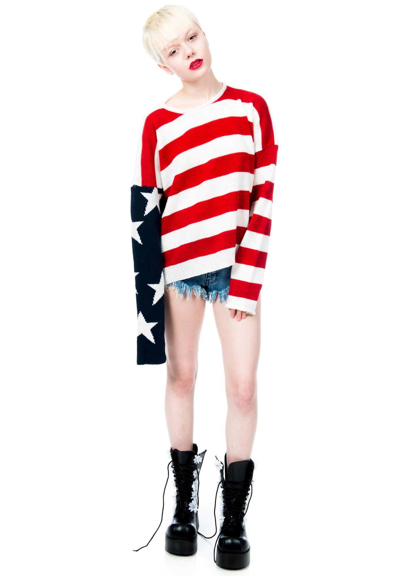 Lizabeth Flag Sweater